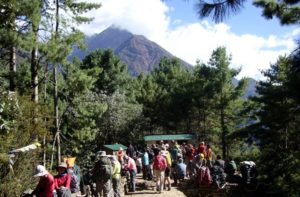 Allibert Trekking reviews Nepal