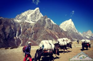 Around Sherpa villages on the way to Everest base camp of Nepal